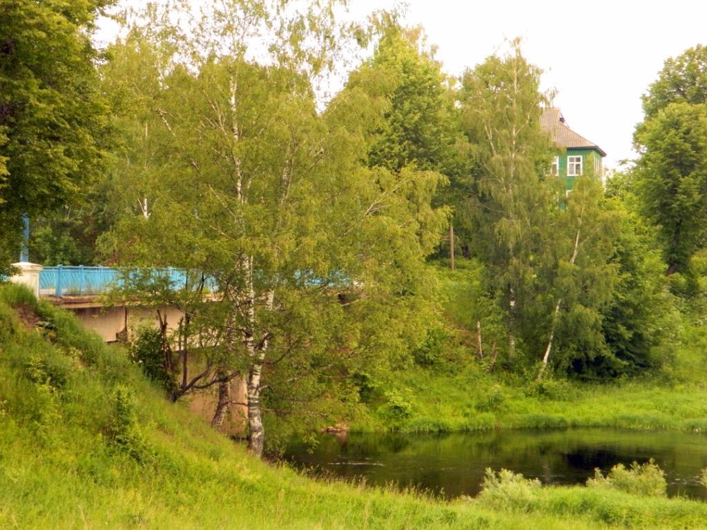 Вид на Кушелевский мост. Июнь 2012 (Фото А. Лельбикс)